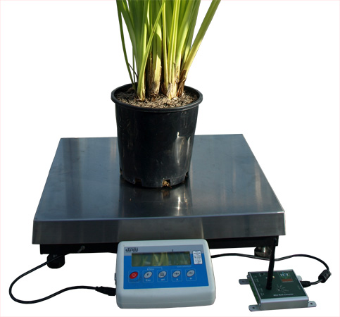 WSM1 - Weigh Scale Meter 60kg