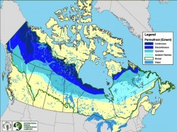 Map of Permafrost