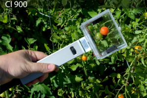 ci-900 Monitoring Ethylene for Fruit Ripening