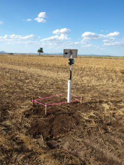 SMM1 Soil Moisture Meter