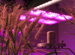 SQ-500 Under LED Lights