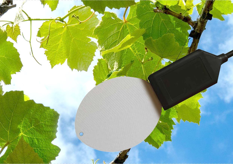 ICT-LWS Leaf Wetness Sensor